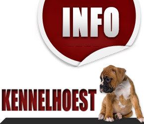 kennelhoest